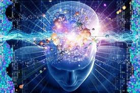 Những Nhận Thức Sai Về Não Bộ